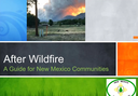 After Wildfire: Planning for the Next Big One (Video)