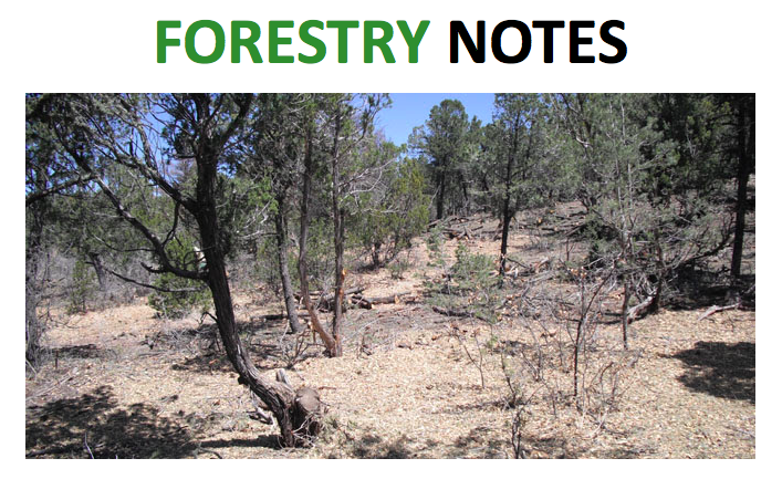 Forestry Notes: May 2014