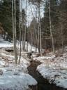 Mountain Snow to Water